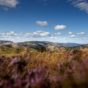 Tirage photo - Vue depuis la Caroux - Haut languedoc